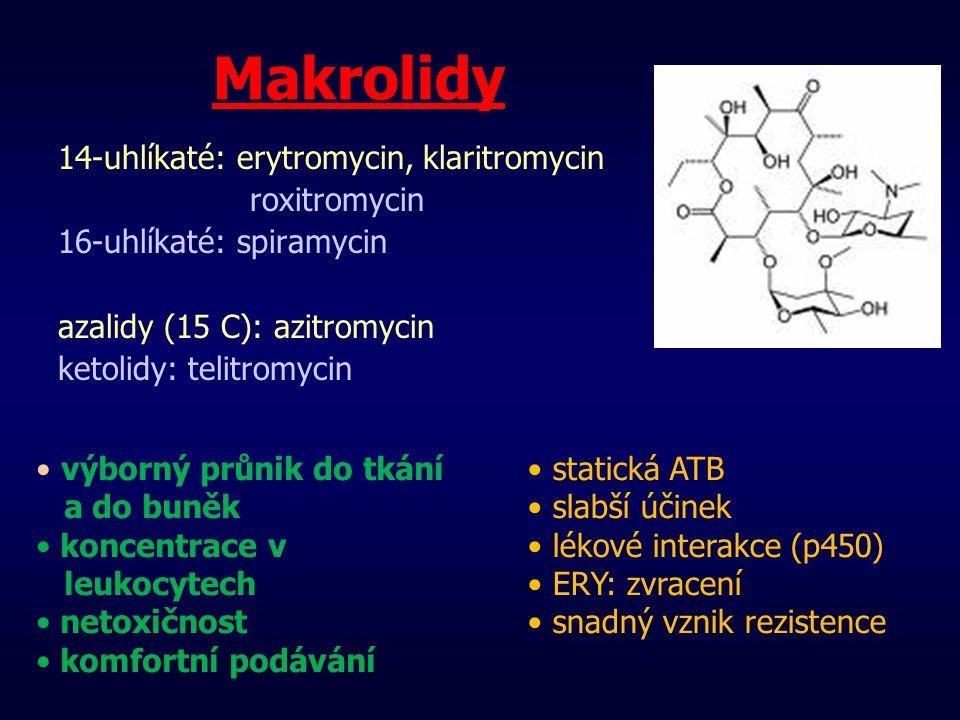 Makrolidy 14-uhlíkaté: erytromycin, klaritromycin roxitromycin 16-uhlíkaté: spiramycin azalidy (15 C): azitromycin ketolidy: telitromycin statická ATB