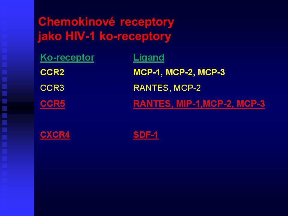 Chemokinové receptory jako HIV-1 ko-receptory