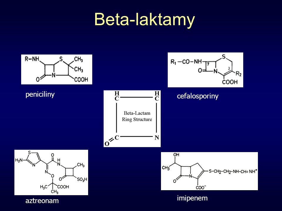 Beta-laktamy imipenem aztreonam peniciliny cefalosporiny