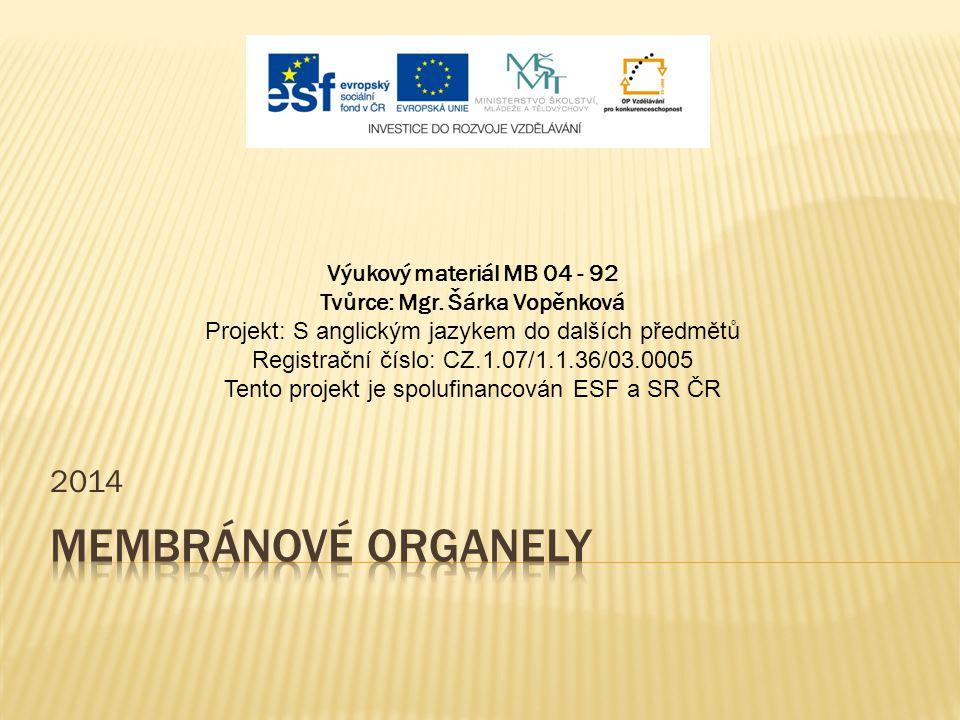 2014 Výukový materiál MB 04 - 92 Tvůrce: Mgr. Šárka Vopěnková Projekt: S anglickým jazykem do dalších předmětů Registrační číslo: CZ.1.07/1.1.36/03.00