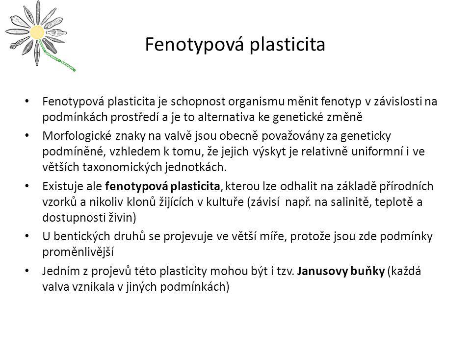 Fenotypová plasticita Fenotypová plasticita je schopnost organismu měnit fenotyp v závislosti na podmínkách prostředí a je to alternativa ke genetické změně Morfologické znaky na valvě jsou obecně považovány za geneticky podmíněné, vzhledem k tomu, že jejich výskyt je relativně uniformní i ve větších taxonomických jednotkách.