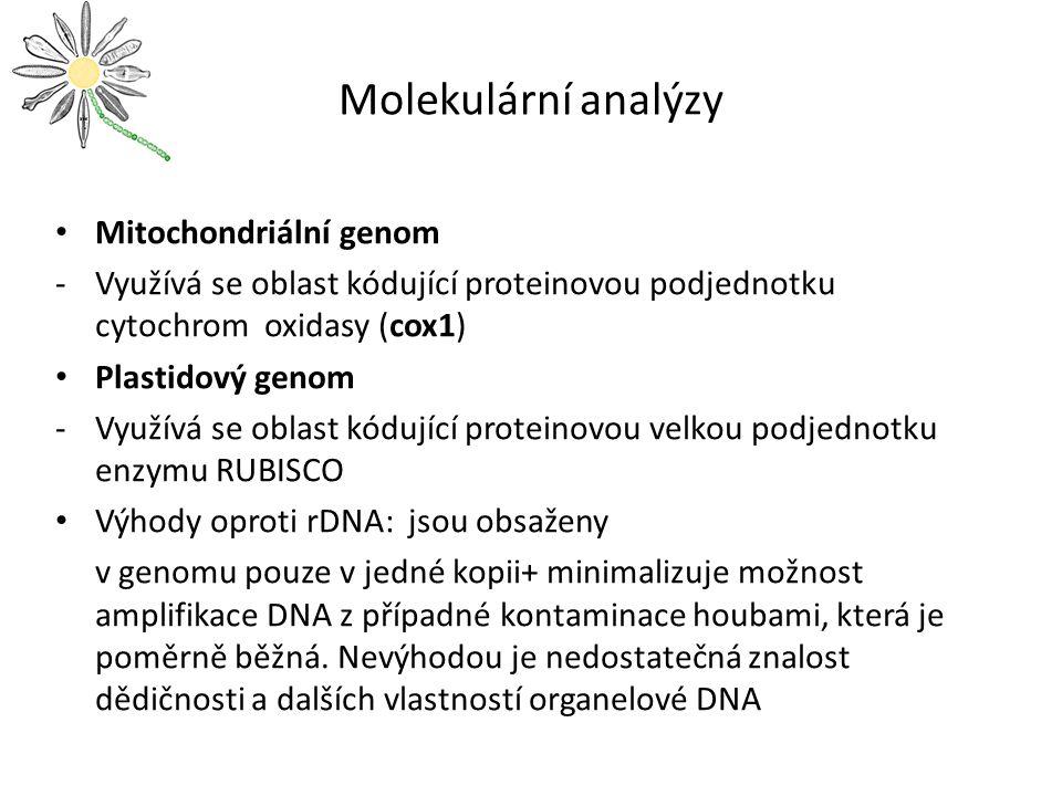 Molekulární analýzy Mitochondriální genom -Využívá se oblast kódující proteinovou podjednotku cytochrom oxidasy (cox1) Plastidový genom -Využívá se oblast kódující proteinovou velkou podjednotku enzymu RUBISCO Výhody oproti rDNA: jsou obsaženy v genomu pouze v jedné kopii+ minimalizuje možnost amplifikace DNA z případné kontaminace houbami, která je poměrně běžná.