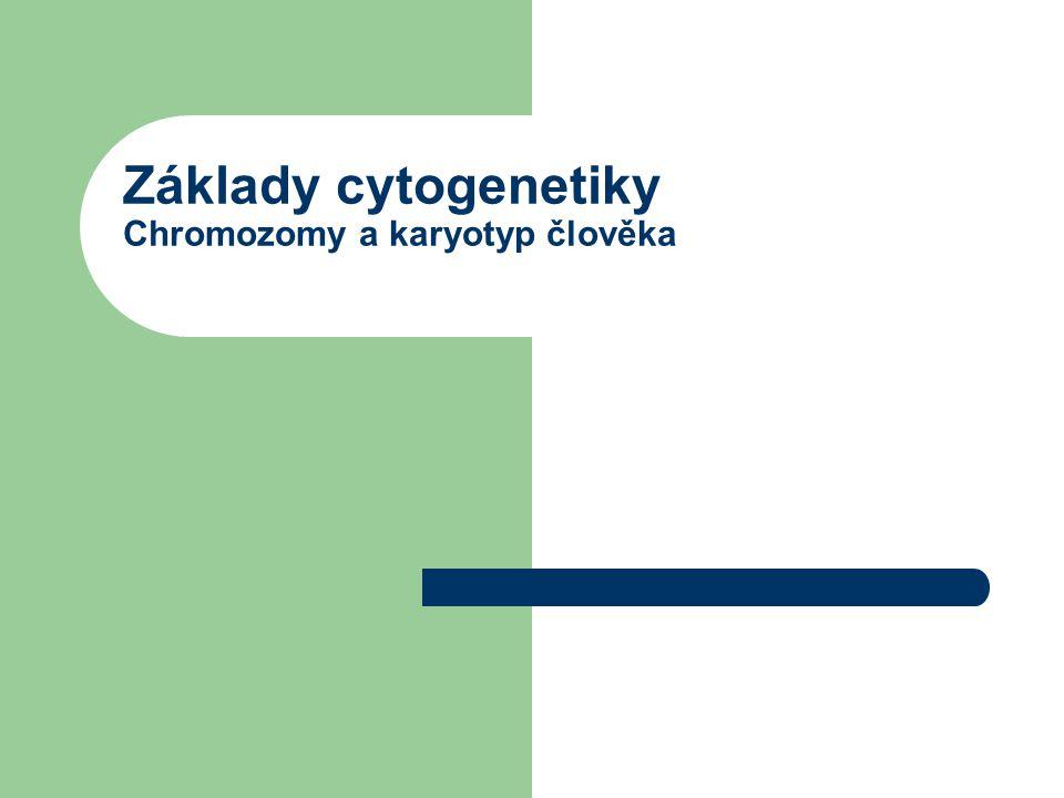 Základy cytogenetiky Chromozomy a karyotyp člověka