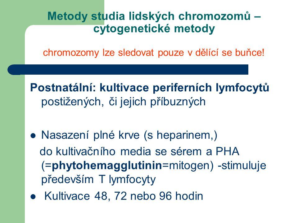 Metody studia lidských chromozomů – cytogenetické metody chromozomy lze sledovat pouze v dělící se buňce.