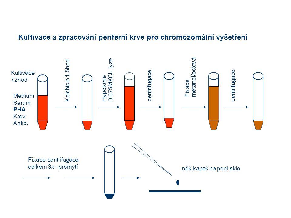 Kultivace a zpracování periferní krve pro chromozomální vyšetření Medium Serum PHA Krev Antib.