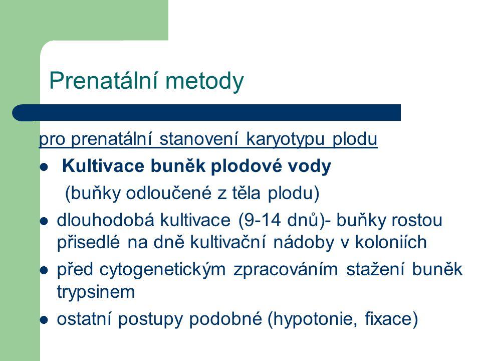 Prenatální metody pro prenatální stanovení karyotypu plodu Kultivace buněk plodové vody (buňky odloučené z těla plodu) dlouhodobá kultivace (9-14 dnů)- buňky rostou přisedlé na dně kultivační nádoby v koloniích před cytogenetickým zpracováním stažení buněk trypsinem ostatní postupy podobné (hypotonie, fixace)