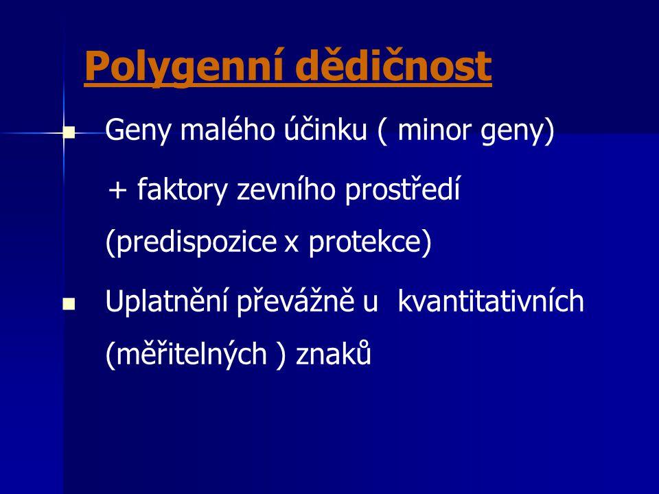 Polygenní dědičnost Geny malého účinku ( minor geny) + faktory zevního prostředí (predispozice x protekce) Uplatnění převážně u kvantitativních (měřit