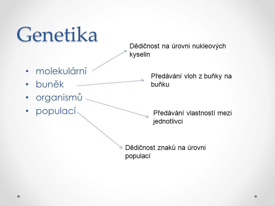 Genotyp a fenotyp genotyp = genetický základ (alely) fenotyp = znak (projev alel) Úplná a neúplná dominance nejjednodušší vztahy mezi dvěma alelami rozlišují se dva typy alel – dominantní (A), recesivní (a) diploidní organismus může mít dvě stejné alely nebo každou alelu jinou AA – dominantní homozygot Aa – heterozygot aa – recesivní homozygot
