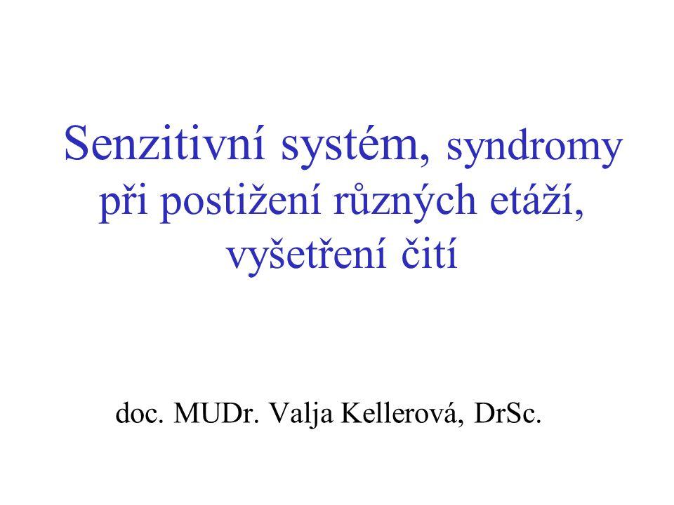 Senzitivní systém, syndromy při postižení různých etáží, vyšetření čití doc. MUDr. Valja Kellerová, DrSc.
