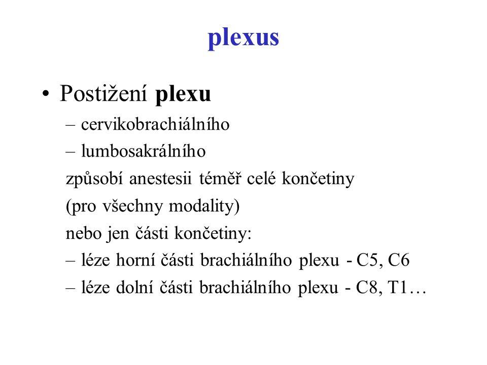 plexus Postižení plexu –cervikobrachiálního –lumbosakrálního způsobí anestesii téměř celé končetiny (pro všechny modality) nebo jen části končetiny: –