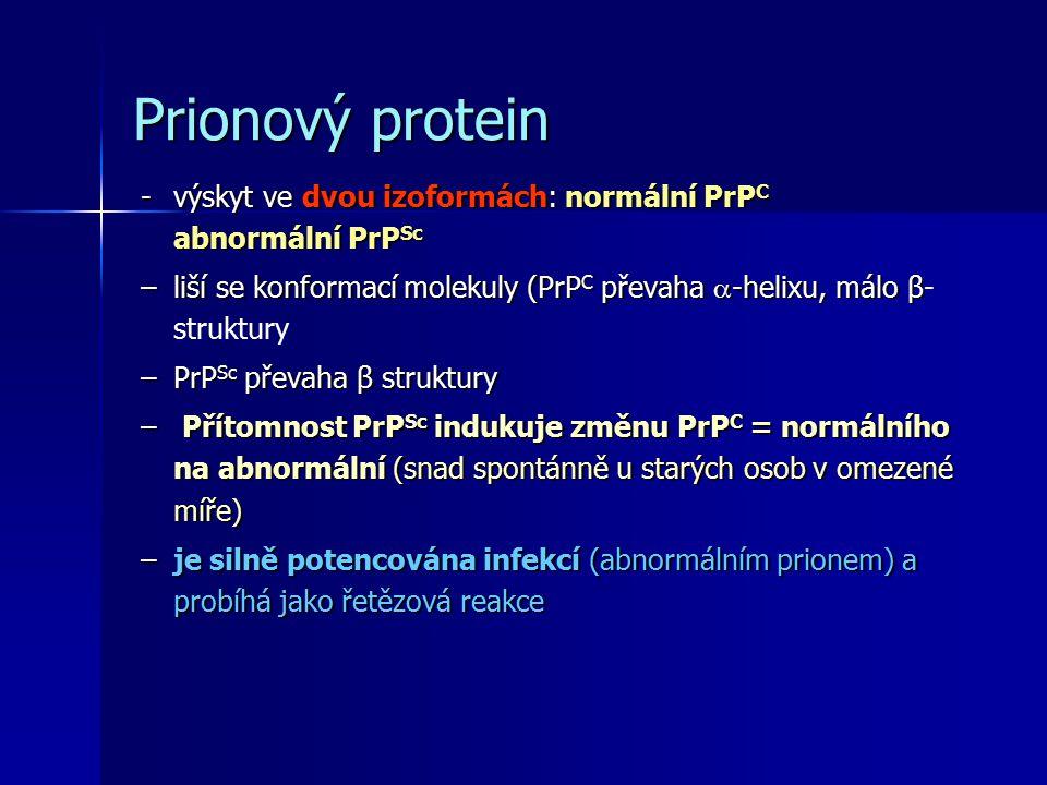 Prionový protein -výskyt ve dvou izoformách: normální PrP C abnormální PrP Sc –liší se konformací molekuly (PrP C převaha  -helixu, málo β –liší se konformací molekuly (PrP C převaha  -helixu, málo β- struktury –PrP Sc převaha β struktury – Přítomnost PrP Sc indukuje změnu PrP C = normálního na abnormální (snad spontánně u starých osob v omezené míře) –je silně potencována infekcí (abnormálním prionem) a probíhá jako řetězová reakce