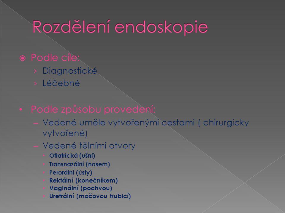  rinoskopie (vyšetření nosu)  epifaryngoskopie (vyšetření nosohltanu)  hypofaryngoskopie (vyšetření dolní části hltanu)  laryngoskopie (vyšetření hrtanu)  tracheobronchoskopie (vyšetření průdušnice a průduškového stromu)  hypofaryngoskopie (vyšetření dolní části hltanu)  laryngoskopie (vyšetření hrtanu)  tracheobronchoskopie (vyšetření průdušnice a průduškového stromu)  ezofagoskopie (vyšetření jícnu)  gastroduoendoskopie (vyšetření žaludku a dvanácterníku)  choledochoskopie (vyšetření žlučových cest)  jejunoskopie (vyšetření tenkého střeva)  anoskopie neboli proktoskopie (vyšetření řiti)  rektoskopie (vyšetření konečníku)