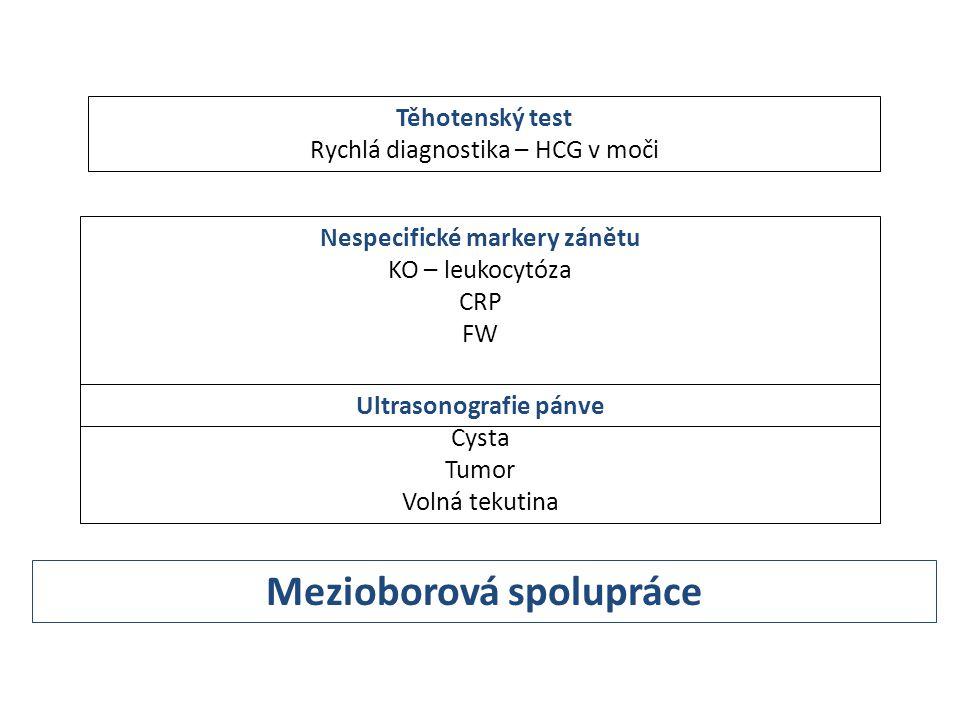 Těhotenský test Rychlá diagnostika – HCG v moči Nespecifické markery zánětu KO – leukocytóza CRP FW Ultrasonografie pánve Cysta Tumor Volná tekutina M