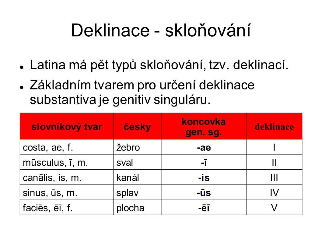 Deklinace - skloňování Latina má pět typů skloňování, tzv. deklinací. Základním tvarem pro určení deklinace substantiva je genitiv singuláru. slovníko