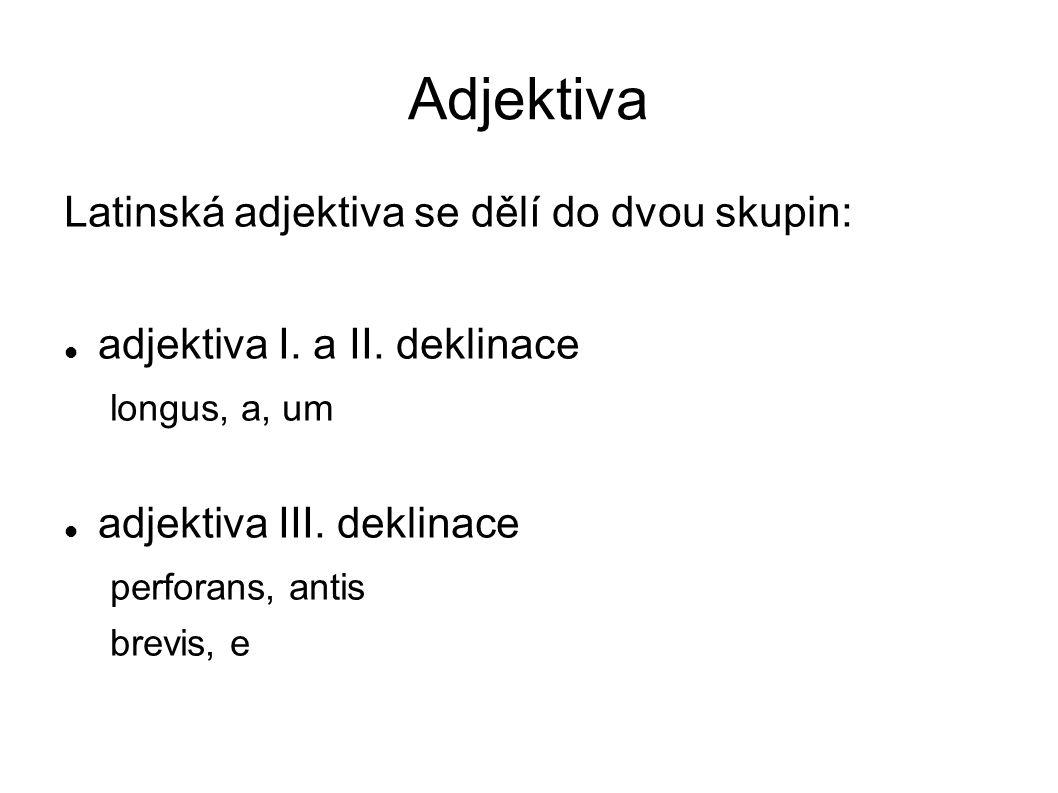 Adjektiva Latinská adjektiva se dělí do dvou skupin: adjektiva I. a II. deklinace longus, a, um adjektiva III. deklinace perforans, antis brevis, e