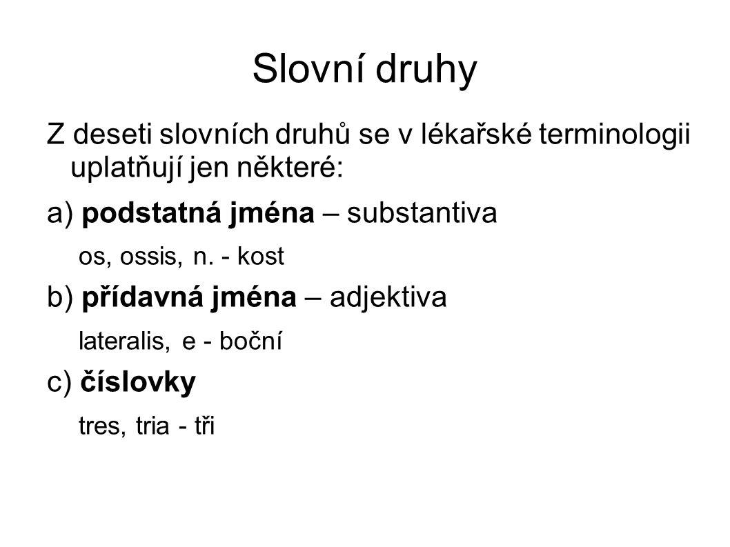 Adjektiva Latinská adjektiva se dělí do dvou skupin: adjektiva I.