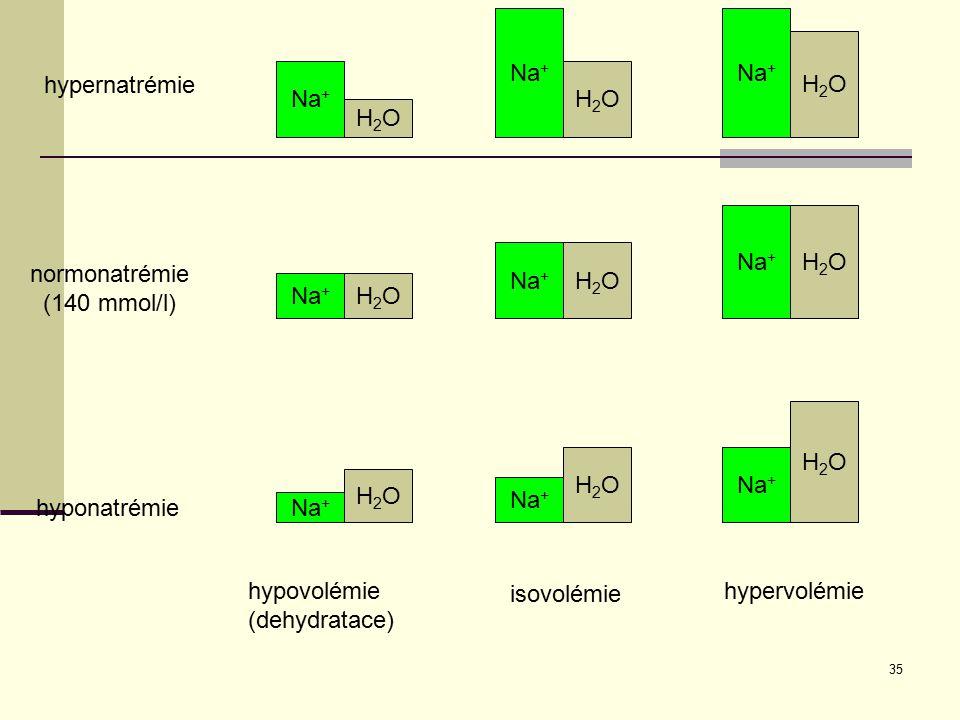 35 Na + H2OH2O H2OH2O H2OH2O H2OH2O H2OH2O H2OH2O H2OH2O H2OH2O H2OH2O isovolémie hypervolémiehypovolémie (dehydratace) hypernatrémie hyponatrémie nor