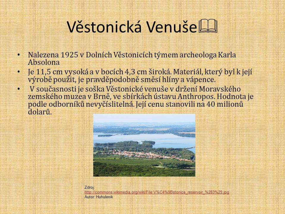Věstonická Venuše  Nalezena 1925 v Dolních Věstonicích týmem archeologa Karla Absolona Je 11,5 cm vysoká a v bocích 4,3 cm široká.