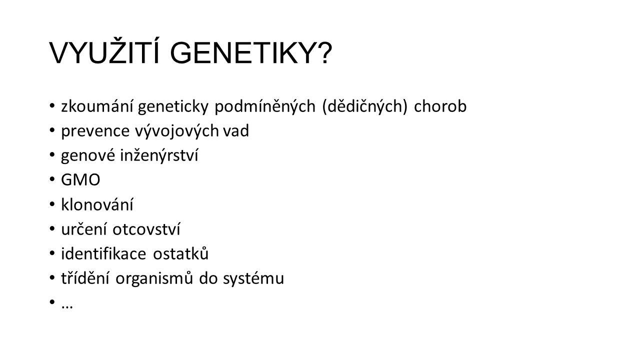VYUŽITÍ GENETIKY? zkoumání geneticky podmíněných (dědičných) chorob prevence vývojových vad genové inženýrství GMO klonování určení otcovství identifi