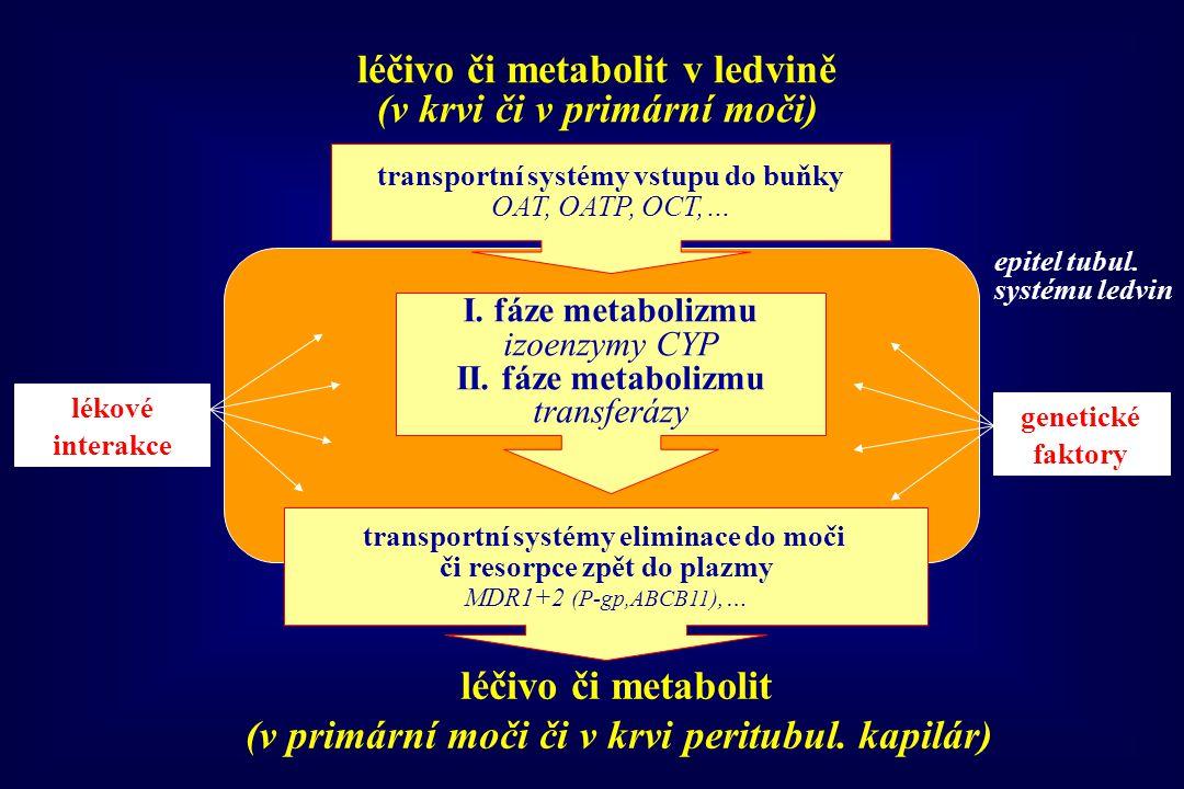 transportní systémy vstupu do buňky OAT, OATP, OCT,… transportní systémy eliminace do moči či resorpce zpět do plazmy MDR1+2 (P-gp,ABCB11),… lékové in