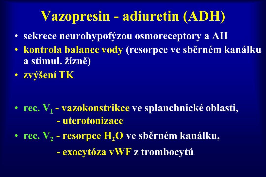 Vazopresin - adiuretin (ADH) sekrece neurohypofýzou osmoreceptory a AII kontrola balance vody (resorpce ve sběrném kanálku a stimul. žízně) zvýšení TK