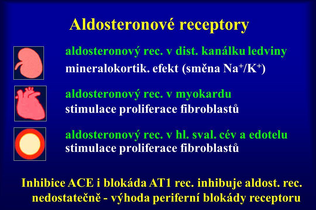 Aldosteronové receptory aldosteronový rec. v dist. kanálku ledviny mineralokortik. efekt (směna Na + /K + ) aldosteronový rec. v myokardu stimulace pr
