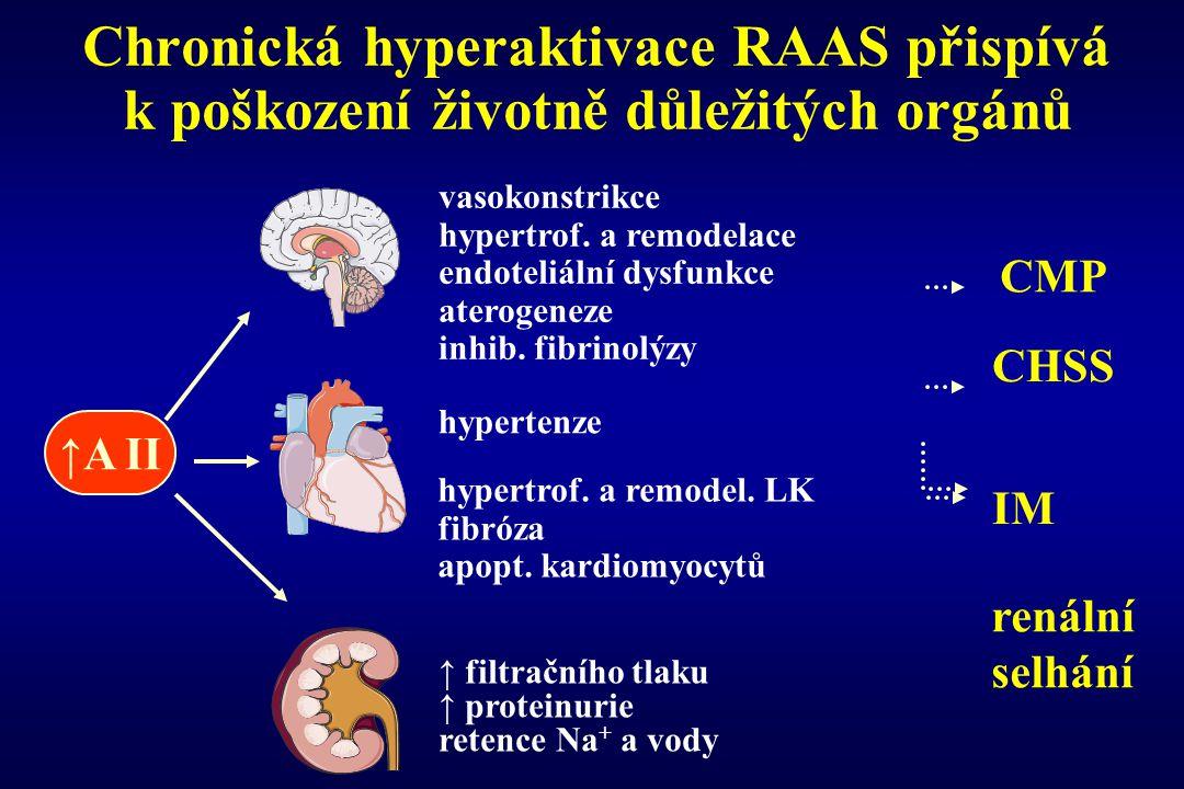 Chronická hyperaktivace RAAS přispívá k poškození životně důležitých orgánů CMP CHSS IM renální selhání ↑ filtračního tlaku ↑ proteinurie retence Na +