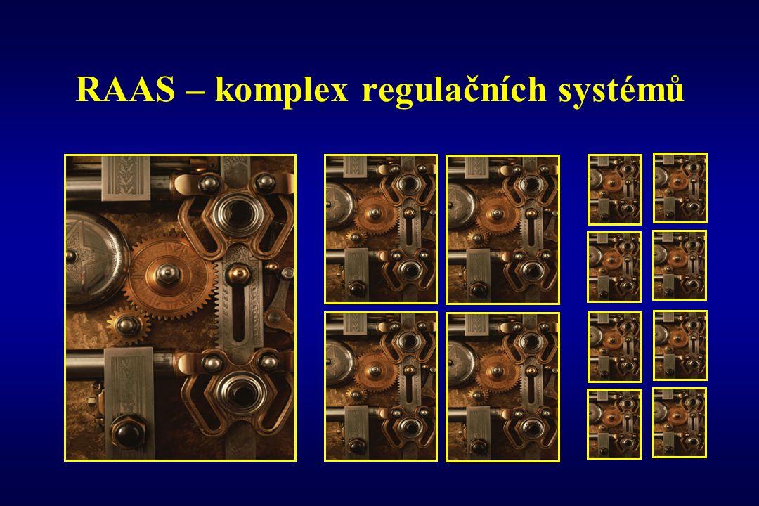 RAAS – komplex regulačních systémů