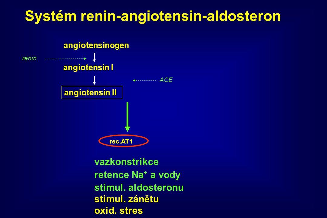 angiotensinogen angiotensin I angiotensin II ACE rec.AT1 vazkonstrikce retence Na + a vody stimul. aldosteronu stimul. zánětu oxid. stres Systém renin