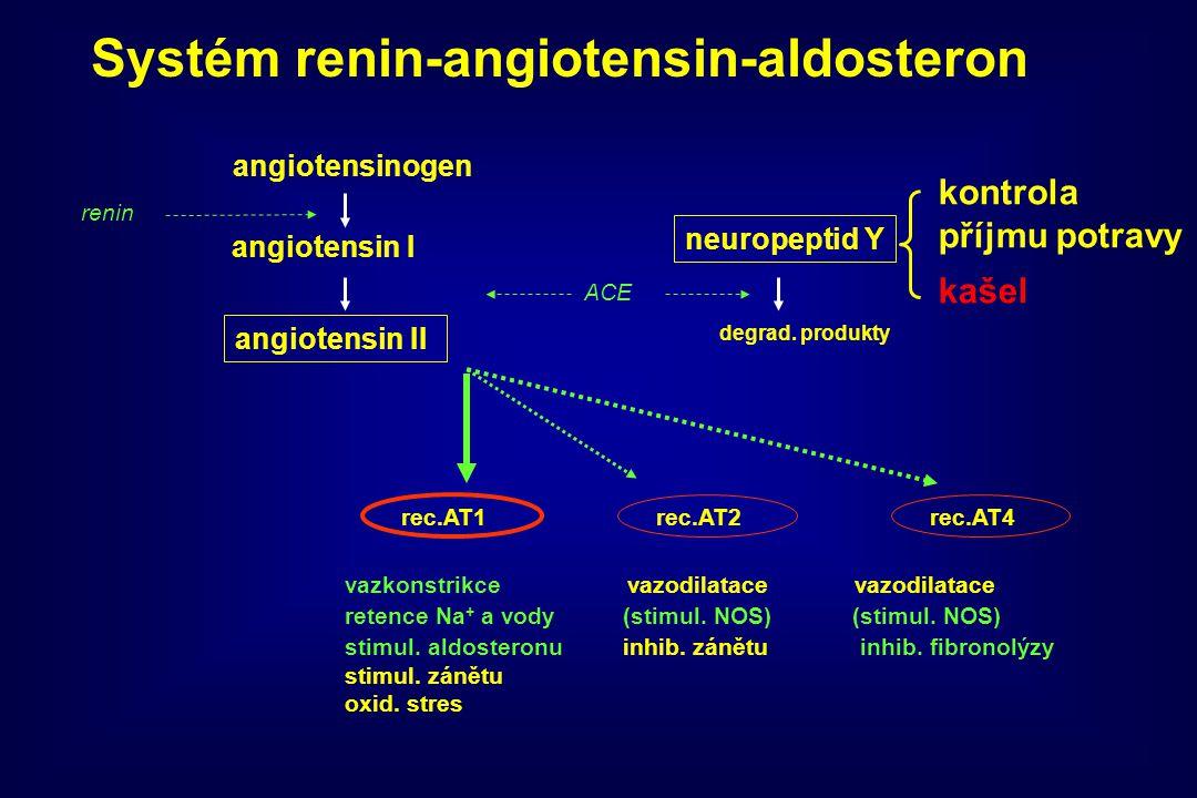 angiotensinogen angiotensin I angiotensin II ACE neuropeptid Y degrad. produkty rec.AT1rec.AT2rec.AT4 vazkonstrikce vazodilatace vazodilatace retence