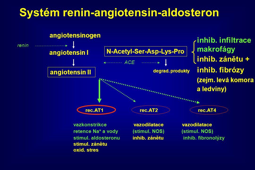 angiotensinogen angiotensin I angiotensin II ACE N-Acetyl-Ser-Asp-Lys-Pro degrad. produkty rec.AT1rec.AT2rec.AT4 vazkonstrikce vazodilatace vazodilata