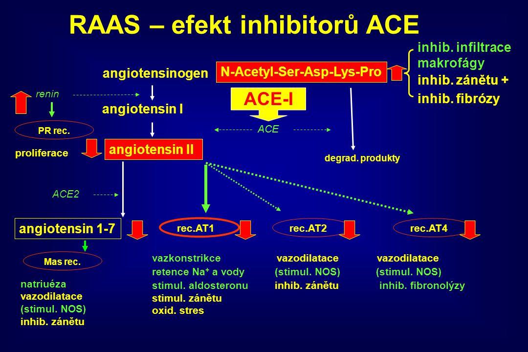 angiotensinogen angiotensin I angiotensin II ACE rec.AT1rec.AT2rec.AT4 vazkonstrikce vazodilatace vazodilatace retence Na + a vody (stimul. NOS) (stim