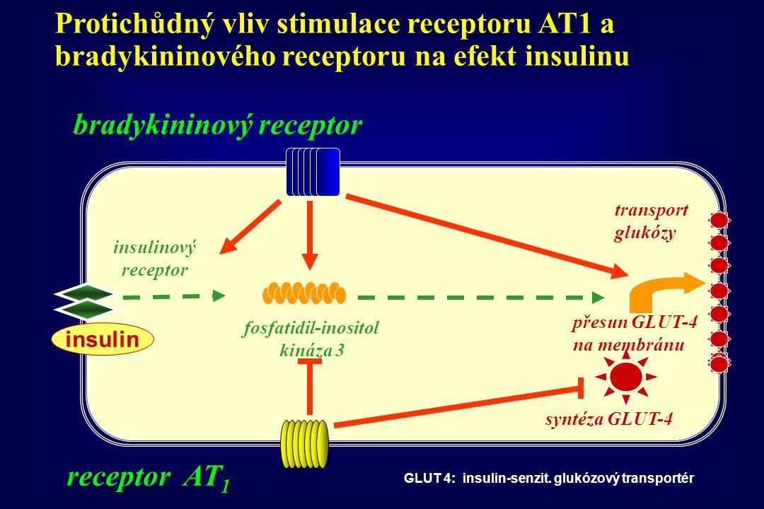 syntéza GLUT-4 insulin insulinový receptor fosfatidil-inositol kináza 3 přesun GLUT-4 na membránu transport glukózy GLUT 4: insulin-senzit. glukózový