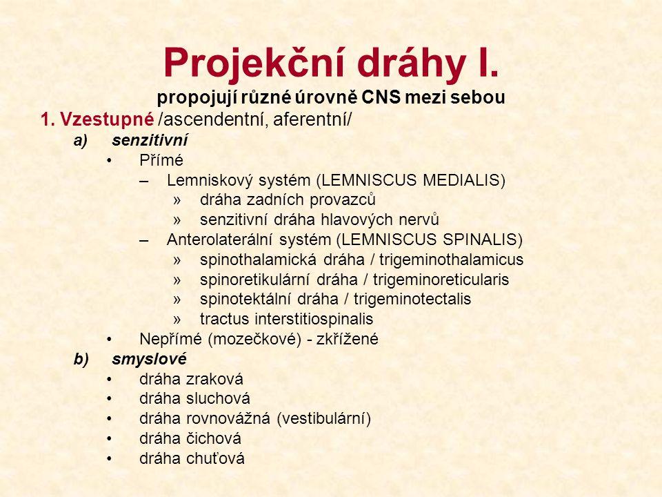 Projekční dráhy I. propojují různé úrovně CNS mezi sebou 1. Vzestupné /ascendentní, aferentní/ a)senzitivní Přímé –Lemniskový systém (LEMNISCUS MEDIAL