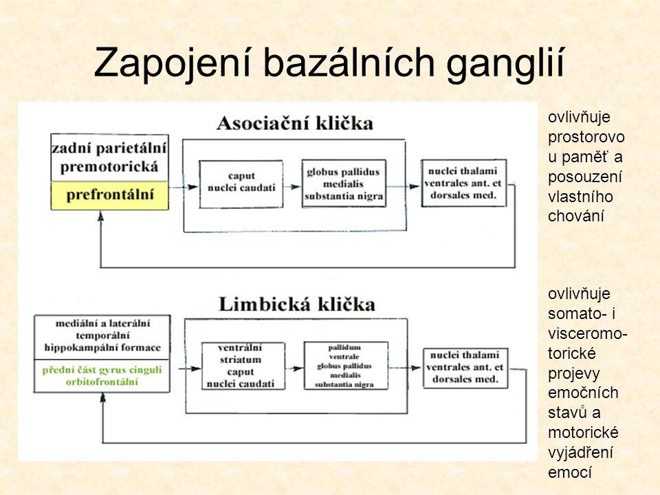 Zapojení bazálních ganglií ovlivňuje somato- i visceromo- torické projevy emočních stavů a motorické vyjádření emocí ovlivňuje prostorovo u paměť a po