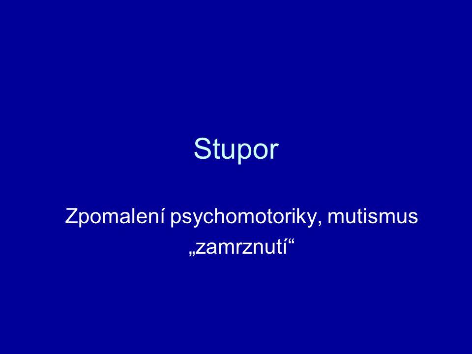 """Stupor Zpomalení psychomotoriky, mutismus """"zamrznutí"""
