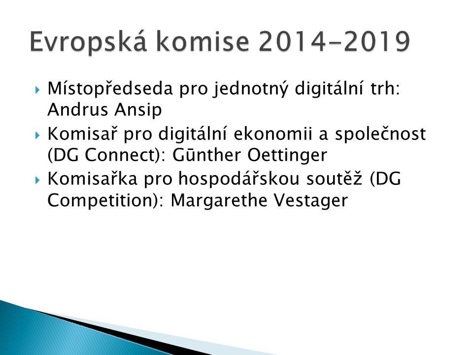  Místopředseda pro jednotný digitální trh: Andrus Ansip  Komisař pro digitální ekonomii a společnost (DG Connect): Gūnther Oettinger  Komisařka pro hospodářskou soutěž (DG Competition): Margarethe Vestager