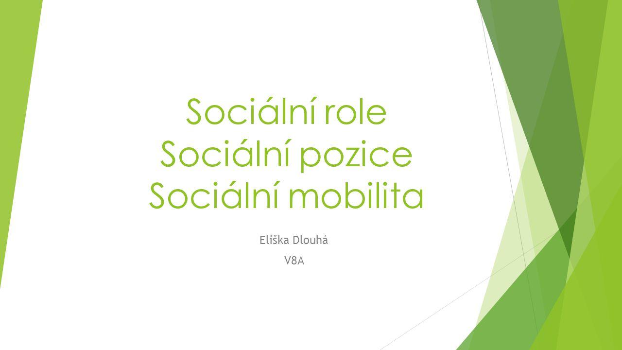 Sociální role Sociální pozice Sociální mobilita Eliška Dlouhá V8A