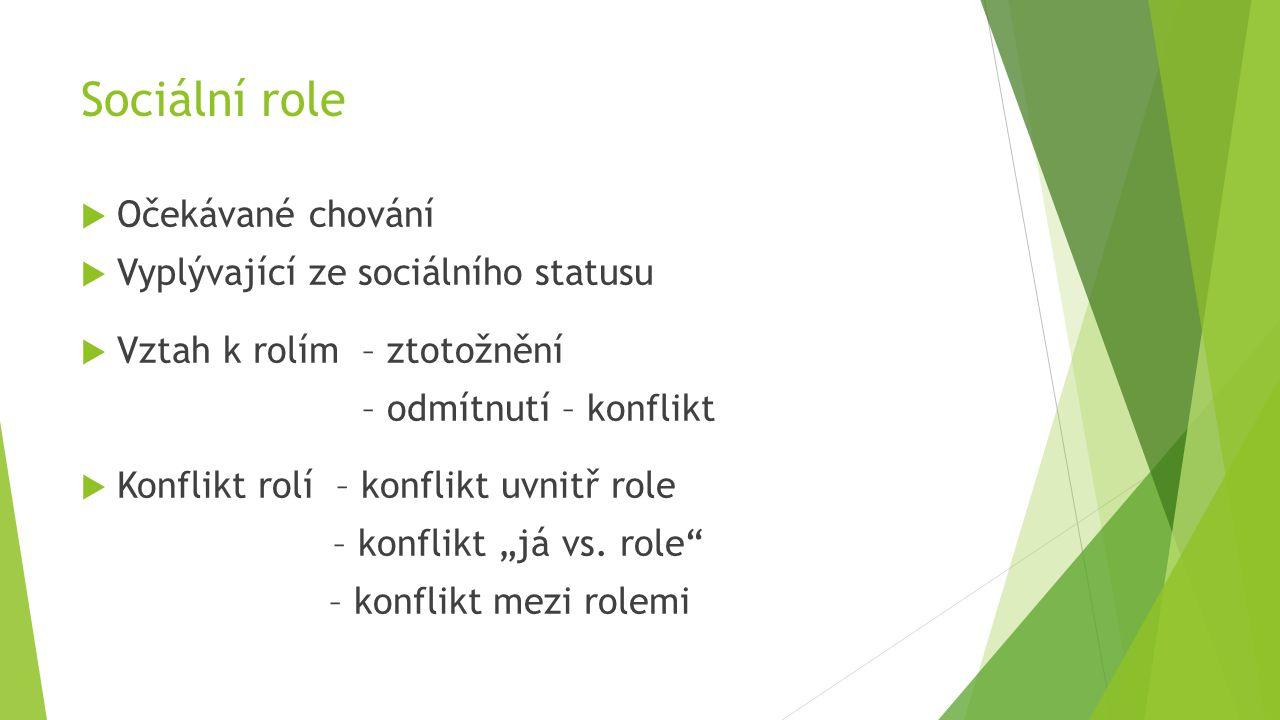 Sociální role  Očekávané chování  Vyplývající ze sociálního statusu  Vztah k rolím – ztotožnění – odmítnutí – konflikt  Konflikt rolí – konflikt u
