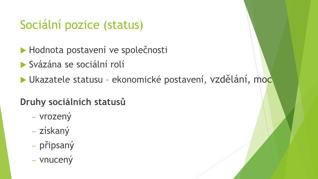 Sociální pozice (status)  Hodnota postavení ve společnosti  Svázána se sociální rolí  Ukazatele statusu – ekonomické postavení, vzdělání, moc Druhy