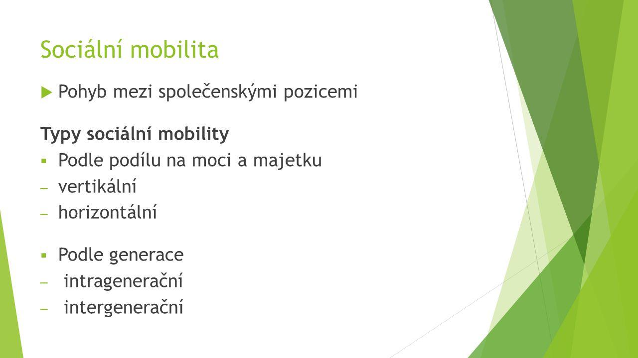 Sociální mobilita  Pohyb mezi společenskými pozicemi Typy sociální mobility  Podle podílu na moci a majetku – vertikální – horizontální  Podle gene