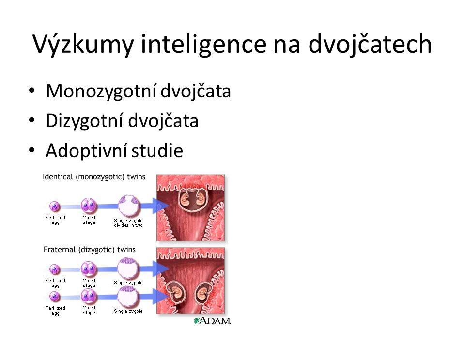 Heritabilita inteligence