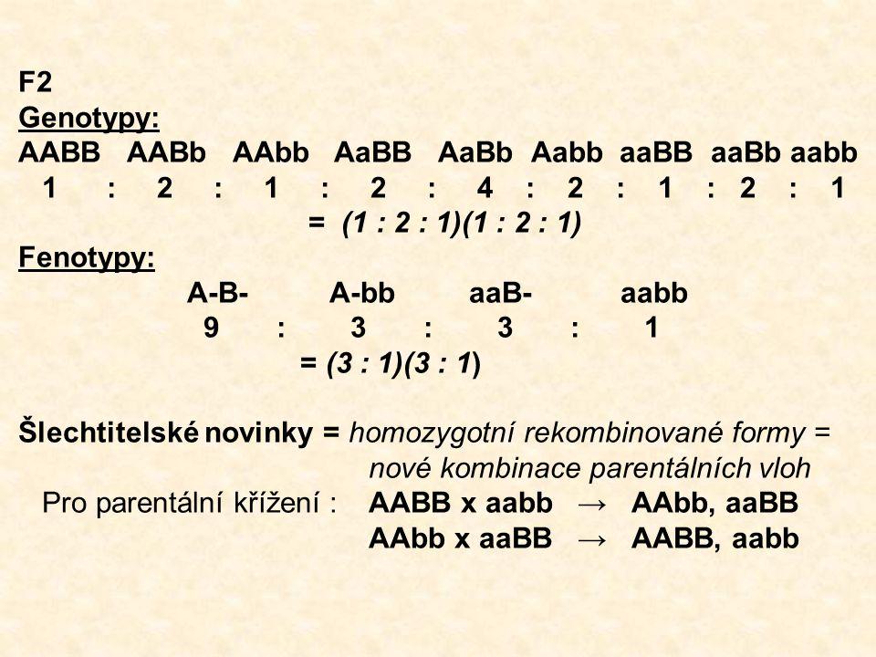 F2 Genotypy: AABB AABb AAbb AaBB AaBb Aabb aaBB aaBb aabb 1 : 2 : 1 : 2 : 4 : 2 : 1 : 2 : 1 = (1 : 2 : 1)(1 : 2 : 1) Fenotypy: A-B- A-bb aaB- aabb 9 : 3 : 3 : 1 = (3 : 1)(3 : 1) Šlechtitelské novinky = homozygotní rekombinované formy = nové kombinace parentálních vloh Pro parentální křížení :AABB x aabb → AAbb, aaBB AAbb x aaBB → AABB, aabb