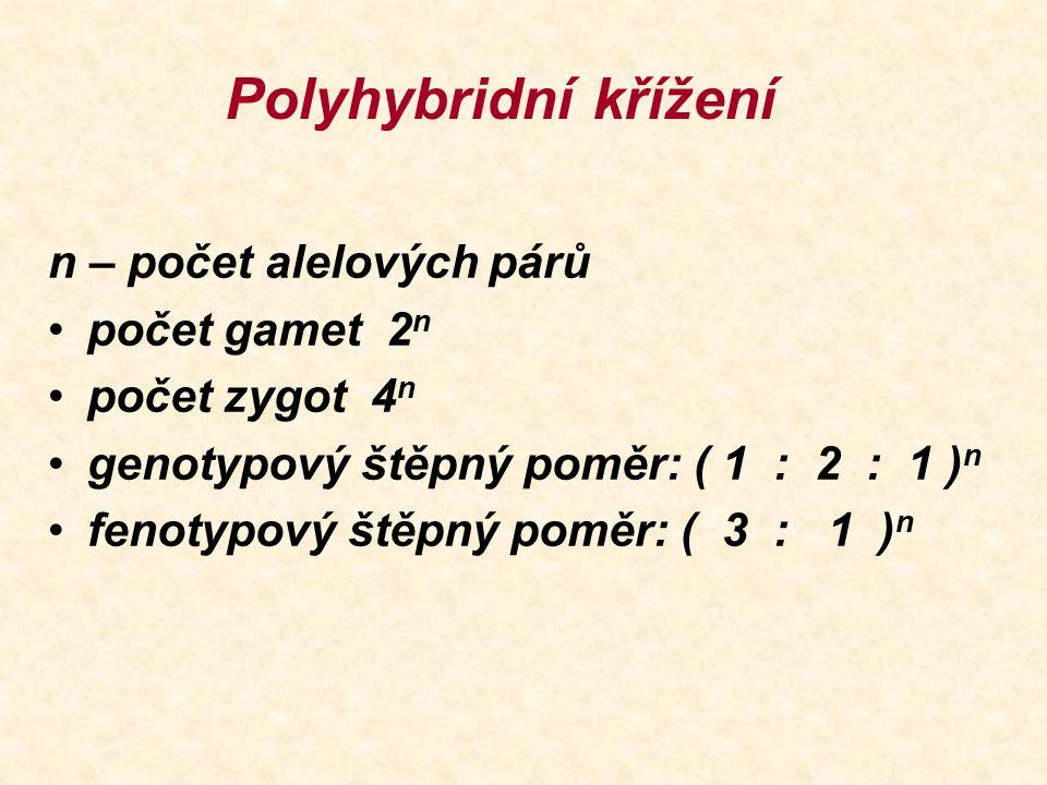 Polyhybridní křížení n – počet alelových párů počet gamet 2 n počet zygot 4 n genotypový štěpný poměr: ( 1 : 2 : 1 ) n fenotypový štěpný poměr: ( 3 :