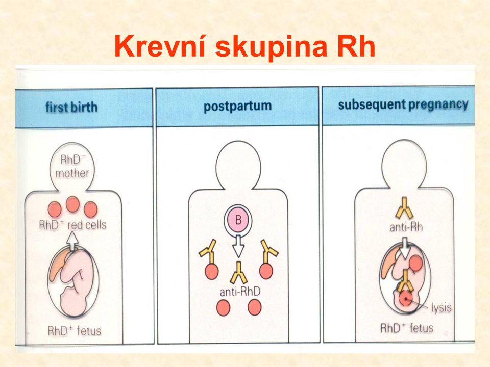 Krevní skupina Rh