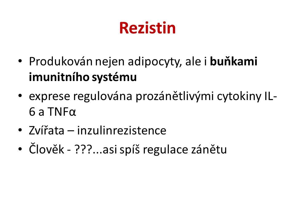 Tuková tkáň a zánět Metaflamation Subklinický zánět Infiltrace bb.
