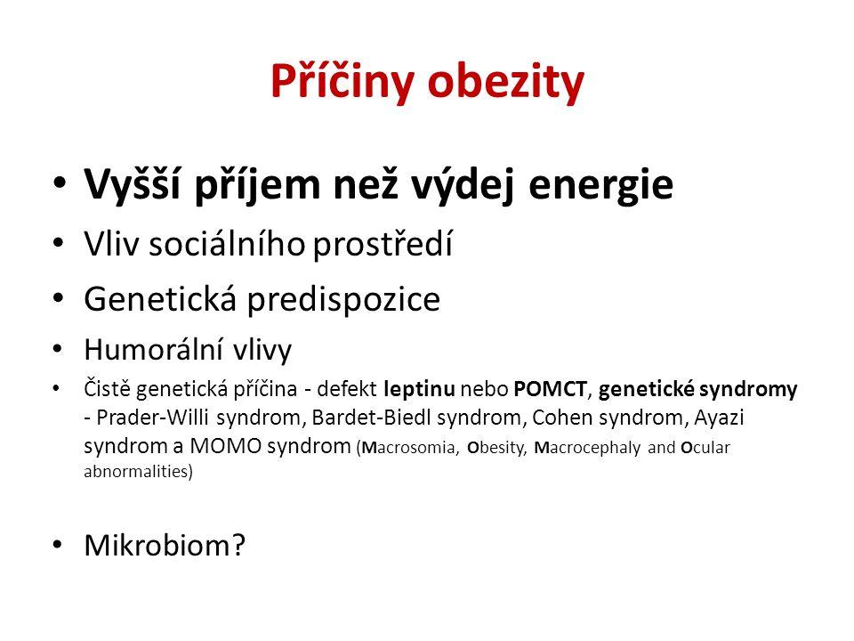 Obezita a fast food Obviňovat z epidemie obezity fastfood je zásadní chyba.