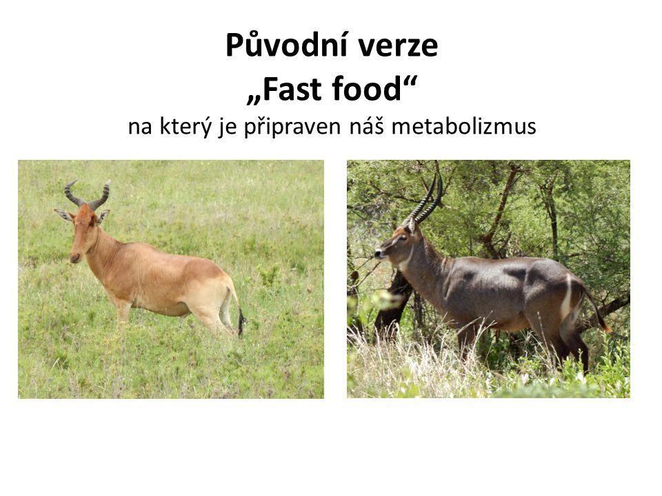 Svět ve kterém jsme se vyvinuli Jídlo utíkalo nebo se těžko hledalo a pro mnoho zvířat jsme byli jídlem my…kdo plýtval energií, umřel…kdo nejedl, když bylo co (hlavně tučné a sladké), umřel….