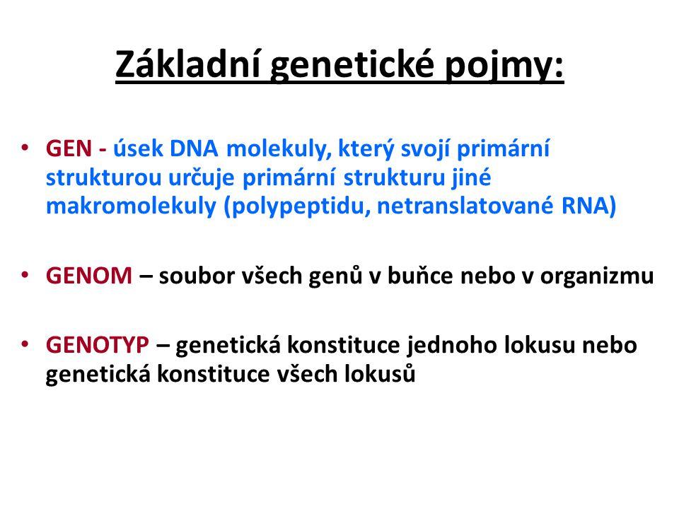 PLEIOTROPIE – mutace v jednom genu má vícečetné fenotypové projevy - symptomy (syndrom = soubor symptomů) MODIFIKACE – nedědičná změna fenotypu FENOKOPIE – nedědičná změna fenotypu napodobující určitý genotyp (odbarvená blondýna)
