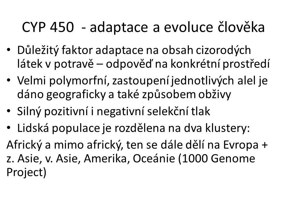 CYP 450 - adaptace a evoluce člověka Důležitý faktor adaptace na obsah cizorodých látek v potravě – odpověď na konkrétní prostředí Velmi polymorfní, z